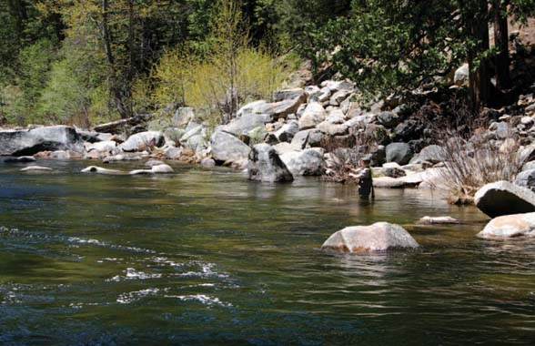 Fishing ebbetts pass scenic byway for Union valley reservoir fishing