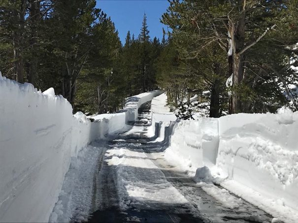 Latest News | Ebbetts Pass Scenic Byway | Page 3